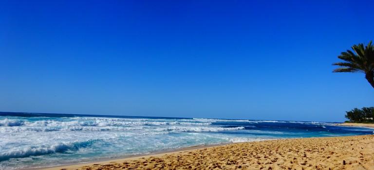Aloha aus Waikiki